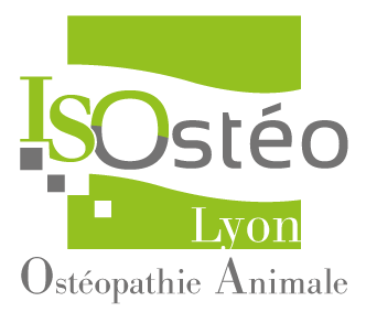 ISOsteo  Animale