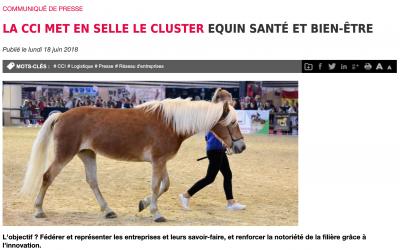 ISOstéo Lyon rejoint le Cluster Equin