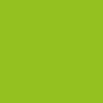 logo Instagram vert clair