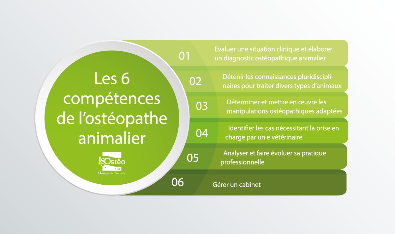 les 6 compétences nécessaires à l'ostéopathe animalier pour bien pratiquer sa profession et ses traitements de soin