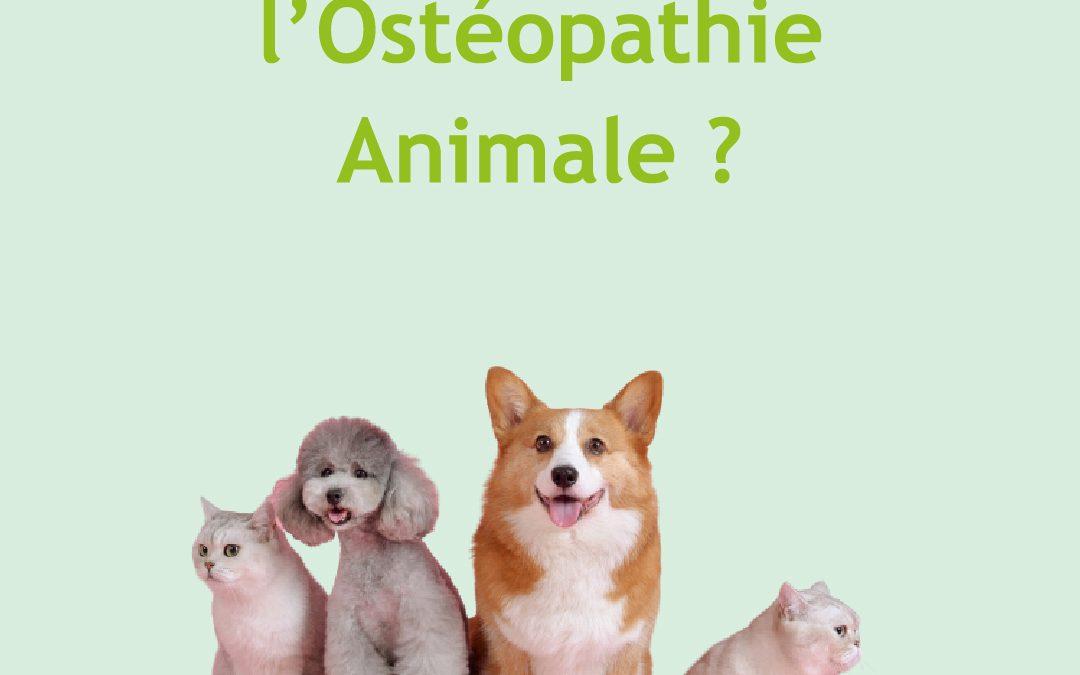 Qu'est-ce que l'ostéopathie animale ?