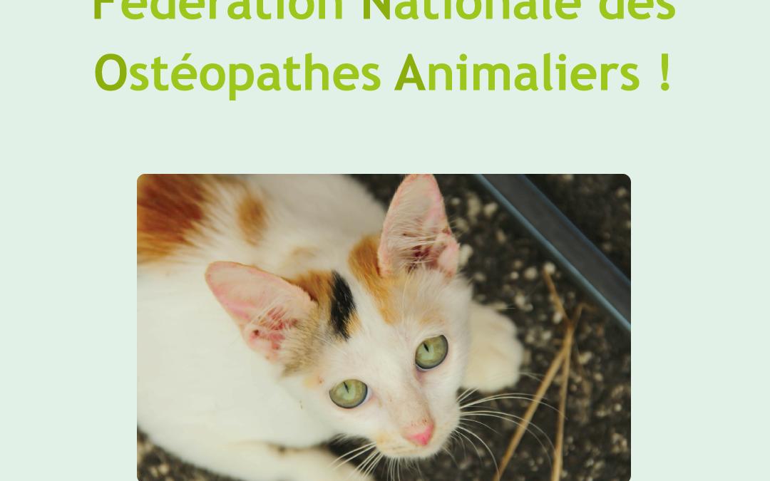 Naissance de la Fédération Nationale des Ostéopathes Animaliers